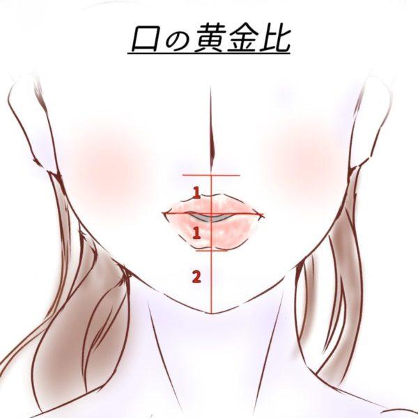 口の黄金比